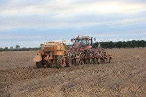 CTF Planting close-up Winchelsea